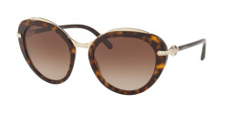 Bvlgari BV 8215 B 504/13  DARK HAVANA  brown gradient