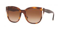 Valentino  VA 4040 501113  HAVANA/CRYSTAL brown gradient