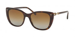 Bvlgari BV 8220  504/T5  DARK HAVANA  polar brown gradient
