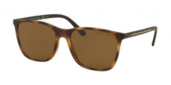 Polo Ralph Lauren PH 4143   518283  MATTE DARK HAVANA  polar brown