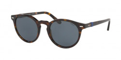 Polo Ralph Lauren PH 4151  500387  DARK HAVANA grey/blue