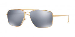 Versace VE 2216  1002Z3 GOLD dark grey mirror silver polar