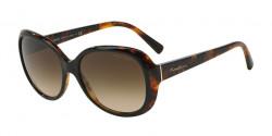 Giorgio Armani AR 8047 504913   TOP BLACK HAVANA brown gradient