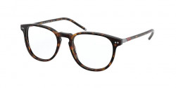 Polo Ralph Lauren PH 2225  5003  SHINY DARK HAVANA