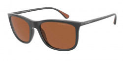 Emporio Armani EA 4155  543773  MATTE GREY brown