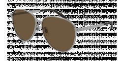 Gucci GG 0945 SA - 003 SILVER brown