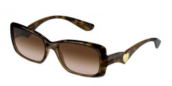 Dolce&Gabbana DG 6152 - 502/13  HAVANA brown gradient