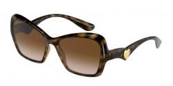 Dolce&Gabbana DG 6153 - 502/13  HAVANA gradient brown