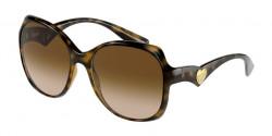 Dolce&Gabbana DG 6154 - 502/13  HAVANA brown gradient