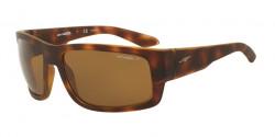 Arnette AN 4221 GRIFTER 232183  FUZZY HAVANA, polar brown