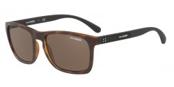 Arnette AN 4236 BURNSIDE 237573  MATTE HAVANA, brown