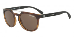 Arnette AN 4237 WOODWARD 237573  MATTE HAVANA, brown