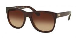 Ralph Lauren RL 8141 50033B  DARK HAVANA, gradient brown