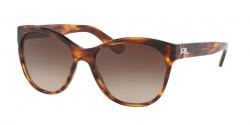 Ralph Lauren RL 8156 500713  STRIPED HAVANA, gradient brown
