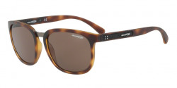 Arnette AN 4238 TIGARD 237573  MATTE DARK HAVANA brown