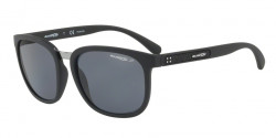 Arnette AN 4238 TIGARD 01/81  MATTE BLACK polar gray