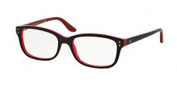 Ralph Lauren RL 6062 5255  TOP HAVANA / RED