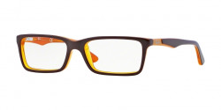 Ray-Ban Junior RY 1534 3588  TOP BROWN ON YELLOW