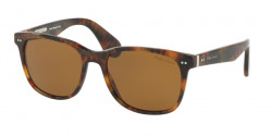Ralph Lauren RL 8162 P 501753  HAVANA JERRY brown